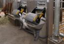 DeLaval introduit le boîtier 'hygiène' pour le système FeedVeaux