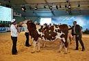 Annulation du Sommet de l'élevage