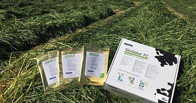 SiloSolve®FC : indispensable dans vos dernières coupes et votre ensilage de maïs !
